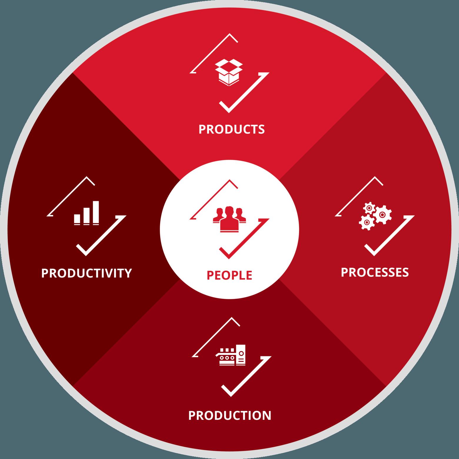 Roue de la stratégie des 5P People Product Partnerships Price Profit