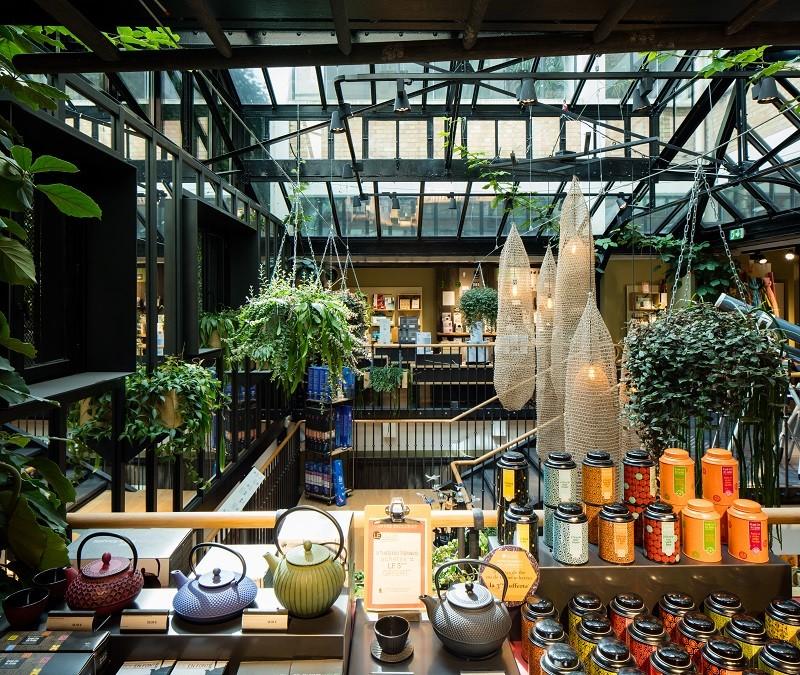 intérieur magasin nature et découverte