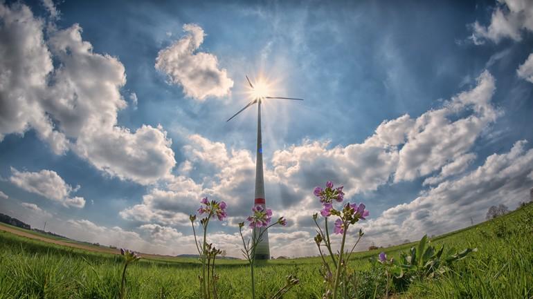 Éolienne dans les prés